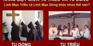 Khác biệt giữa chủng viện, đan viện và tu viện, giữa linh mục triều và dòng